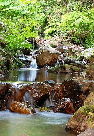 Cascata Fraga Alta - Trilho dos Apalaches - Oleiros